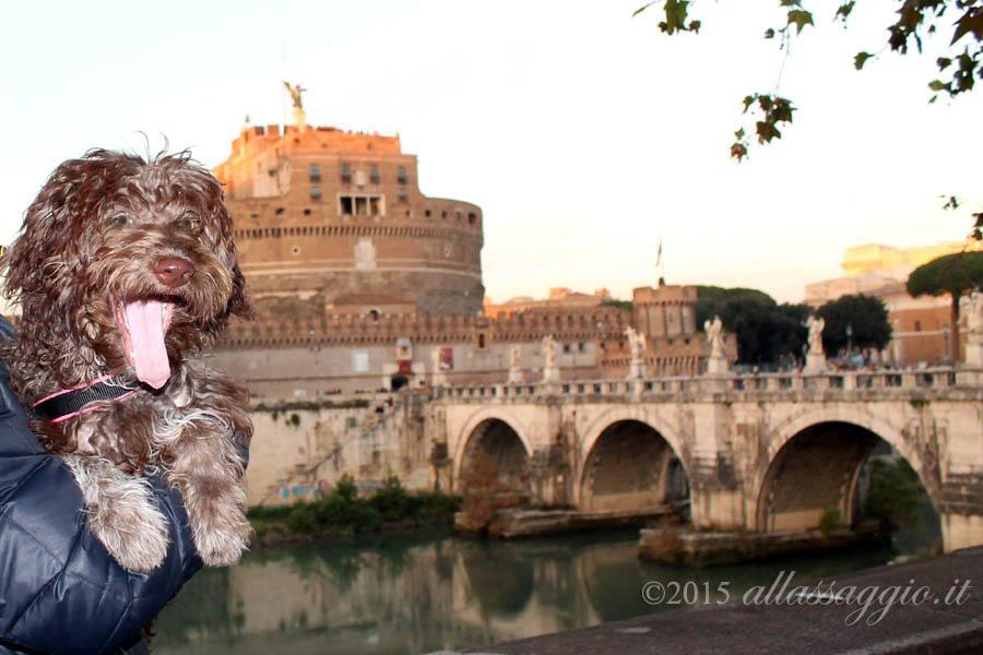 Lilli Castel Sant'Angelo