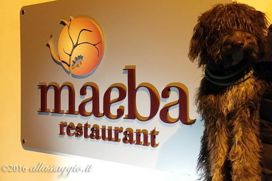Lilli Maeba